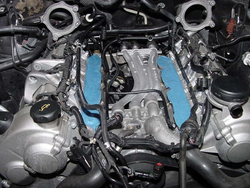 Did You See What It Takes To Change The Starter Pelican