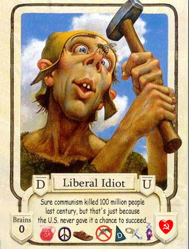 stupid liberal future