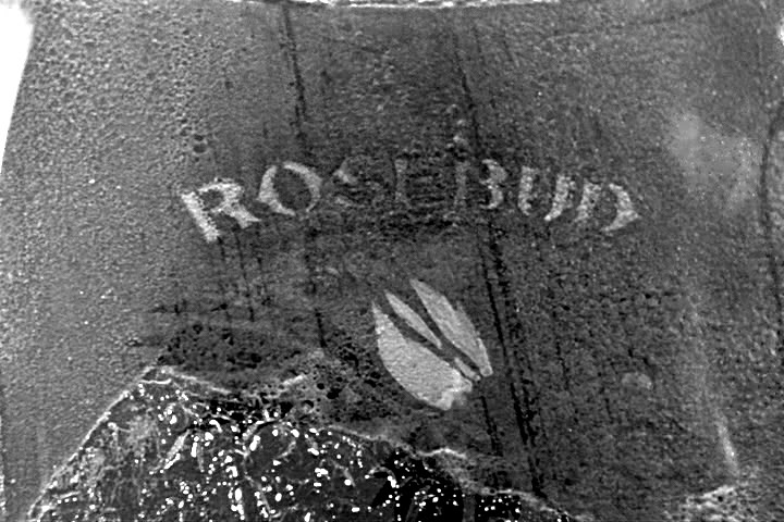 """citizen kane and the meaning of rosebud A """"rosebud"""" by any other name citizen kane, made in 1941 by beneath the crest of mustache, saying, or sighing, rosebud, did take on new."""