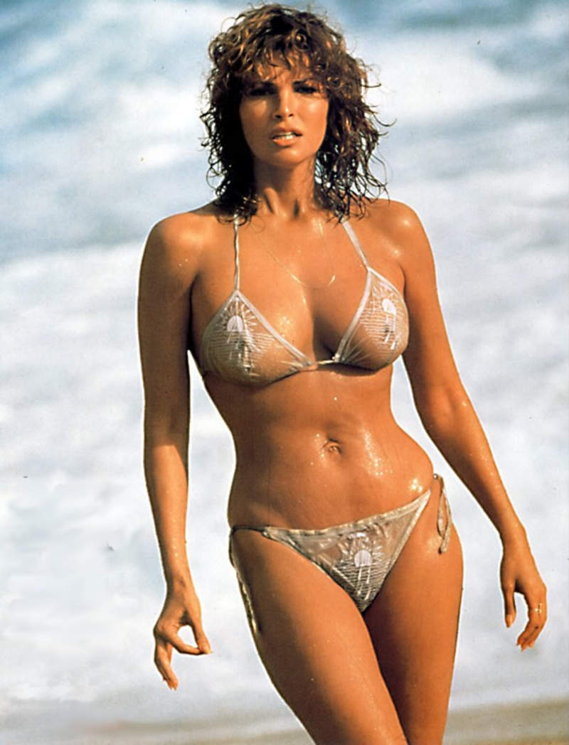 http://forums.pelicanparts.com/uploads8/raquel_welch1155312544.jpg